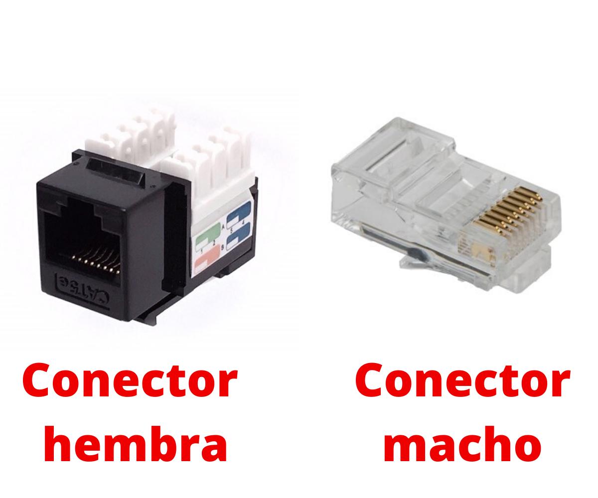 Conector macho y hembra RJ 45